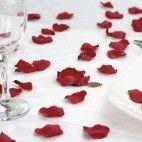 Rosenblade mørke røde