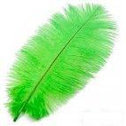 Strudsefjer limegrøn 20cm