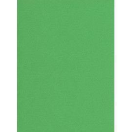 Karton, A4, 210x297 mm, 180g, græsgrøn, 10 ark
