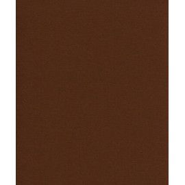 Karton, A4, 210x297 mm, 180g, kaffebrun, 10 ark