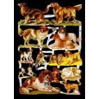 Glansbilleder med hunde