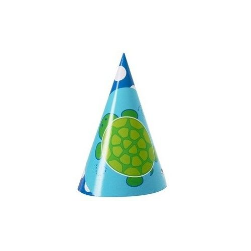 Mr.Turtle party hat