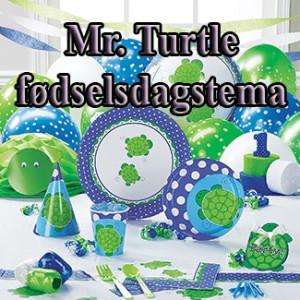 Mr.Turtle fødselsdag